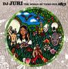 THE WORLD OF TAIKO DUB / DJ JURI